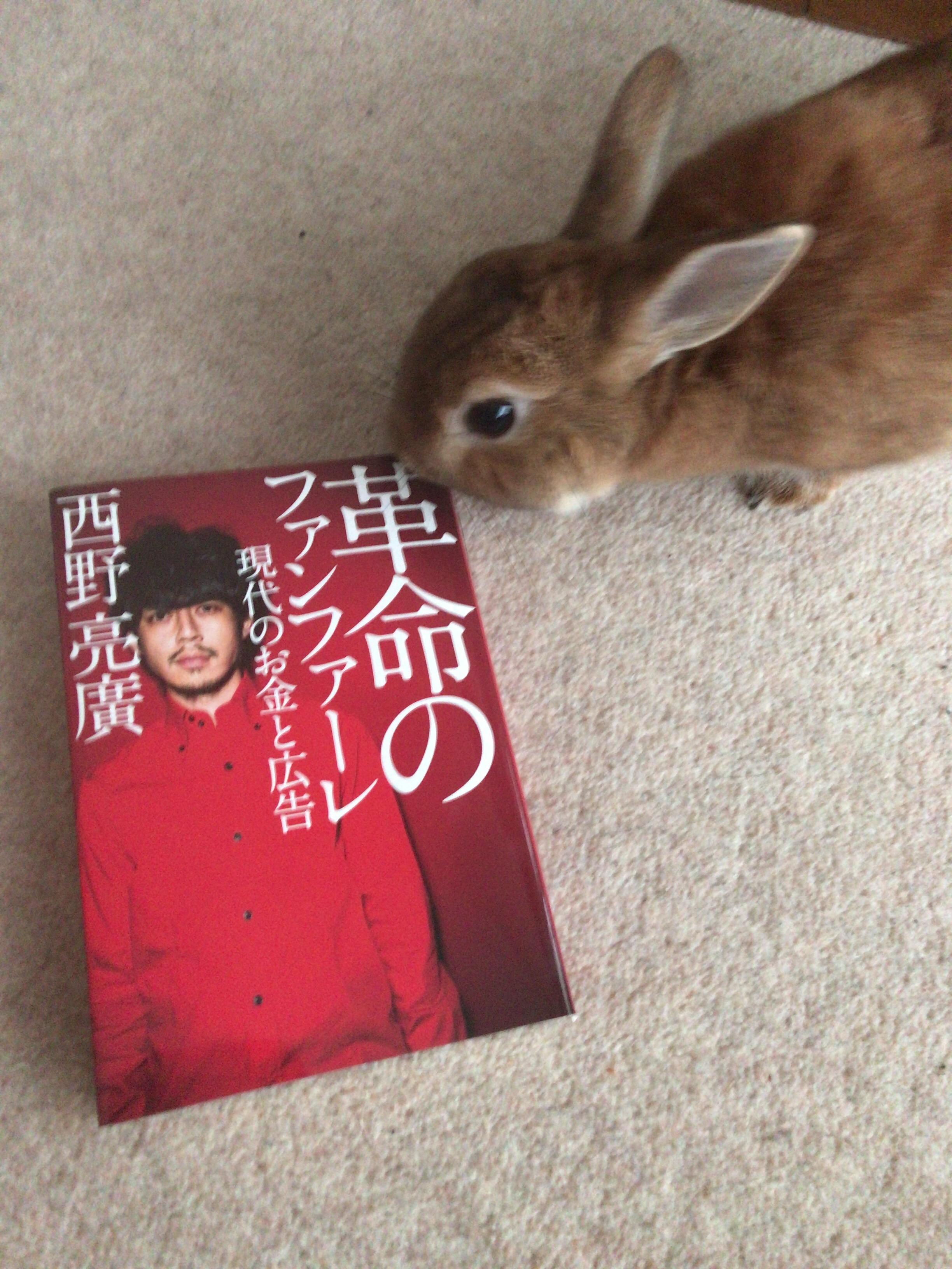 【本の感想】革命のファンファーレ