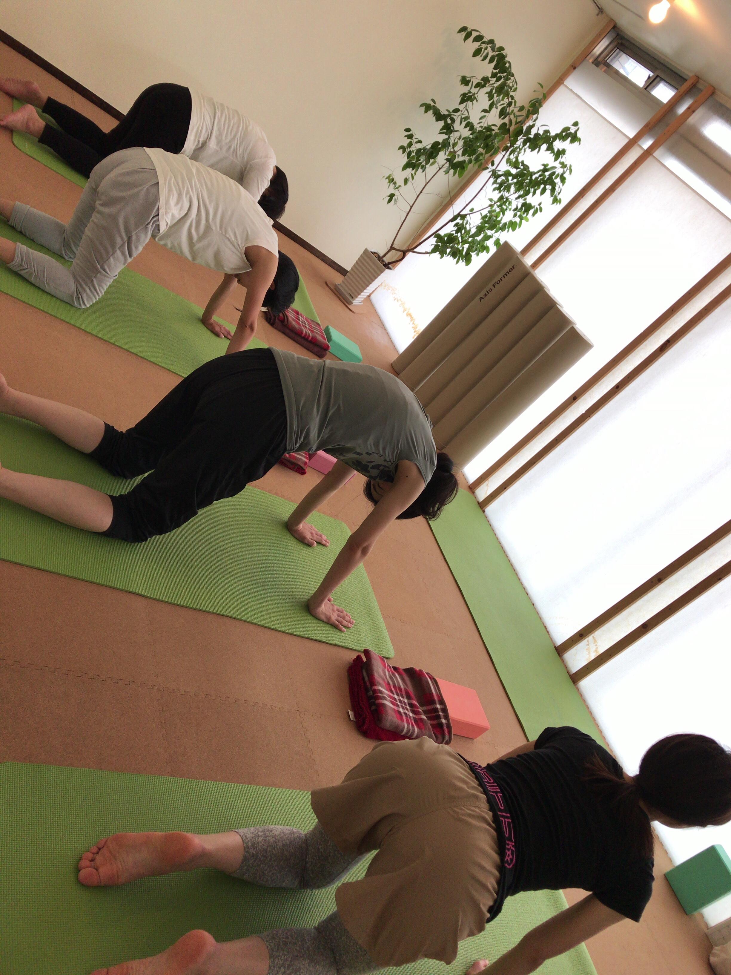 【札幌円山ヨガスタジオアウラ】2018年8月第2週/第3週