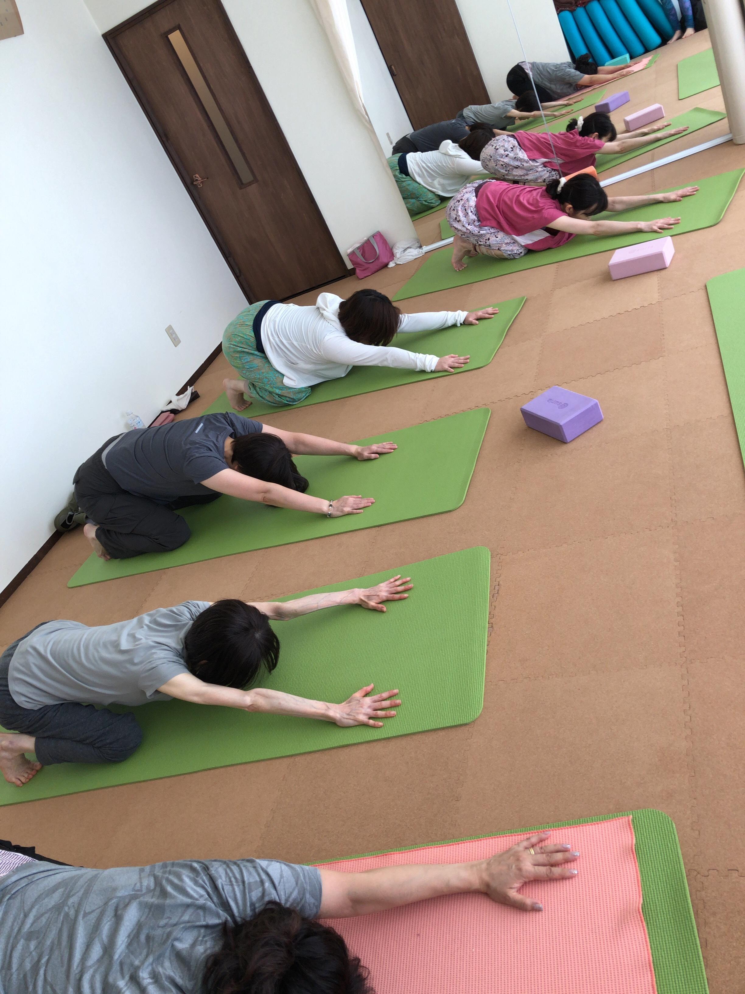 【札幌円山でヨガピラティス】2019年8月第3週